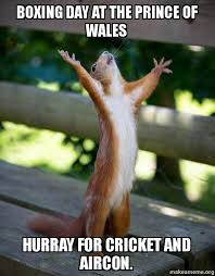 Boxing Day Meme - boxing day at the prince of wales hurray for cricket and aircon