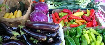 vitality directory 2016 hyde park farmers market