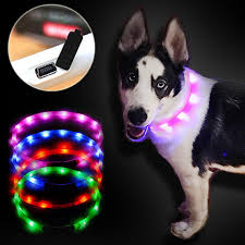 collar light for small dogs adjustable usb luminous lighting pet dog leash led light charging