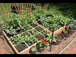 dazzling home vegetable garden ideas types on a budget youtube