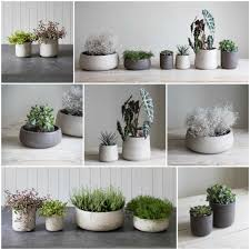 cactus home decor planters amusing concrete pots for sale concrete pots for sale