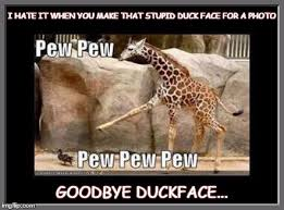 Stupid Animal Memes - i hate it when you make that stupid duck face for a photo goodbye