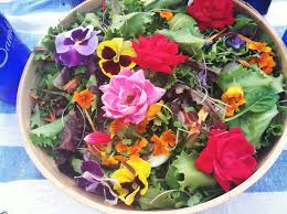 Salad With Edible Flowers - a salad by any other name u2026 u2013 blue moon acres