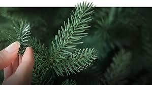 smart idea artificial tree shop shopko shops in ct norfolk