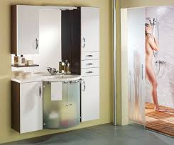 Small Bathroom Cabinet Home Design Ideas And Pictures - Bathroom storage designs
