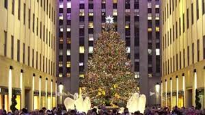 get a first look at this year u0027s rockefeller center christmas tree