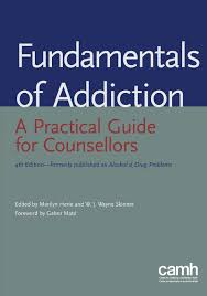 fundamentals of addiction a practical guide for counsellors