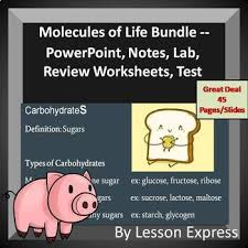 molecules of life organic compounds bundle by lessonexpress tpt