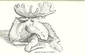 i drew me some aminals james u0027 artlog