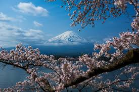 11 great places to visit on your way back from mt fuji tsunagu