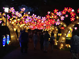 Botanical Gardens Christmas Lights by Free Images Tree Light Night Crowd Asian Chinese Red Park