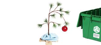 Charlie Brown And Christmas Tree - a free charlie brown christmas tree for your tiny apartment