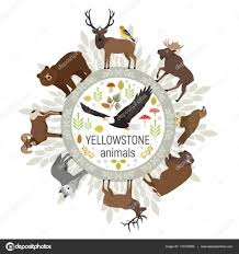 moose template circle vector template of yellowstone national park animals