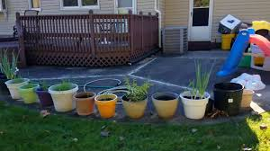 flea tick spraying home and yard east brunswick nj 732 284