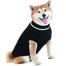 fashion pet fashion pet black cable knit sweater sweaters