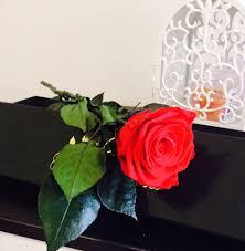 forever roses deluxe forever roses örök rózsák