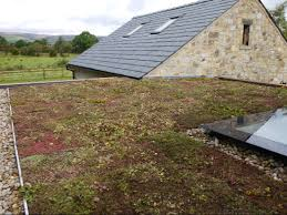 a garage roof in ripon green roofs naturally otley