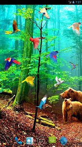 forest birds live wallpaper android apps on google play