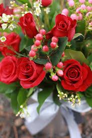 a dozen roses a dozen roses farida floral
