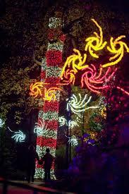 holiday light shows at botanical gardens hgtv