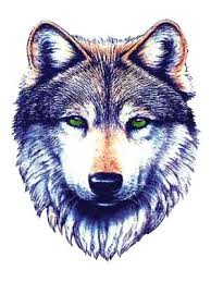 image dreamcatcher wolf png jam clans wiki