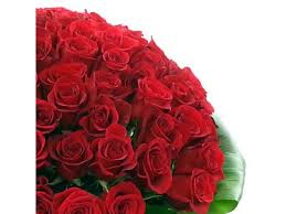 100 Roses 100 Red Roses Flower Delivery In The Uk By Clare Florist
