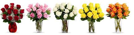 s day roses how to choose the right for every occasion proflowers