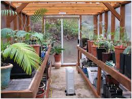 backyards appealing small backyard greenhouses simple backyard