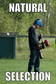19 very funny paintball pictures and photos