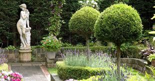 design the garden of your dreams diarmuid gavin u0027s guide mirror