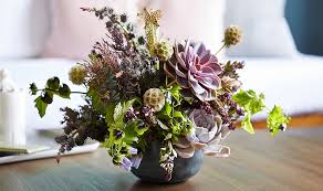 succulent arrangements succulent flower arrangements