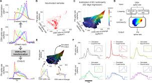 projection neurons in drosophila antennal lobes signal the