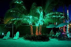 landscape lighting south florida hundreds of thousands of lights on display at florida botanical