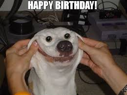 Birthday Dog Meme - happy birthday meme dog 66897 memeshappen