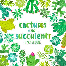 cactus and succulent vector frame banner card invitation