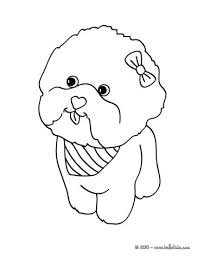 maltese dog puppy coloring pages hellokids