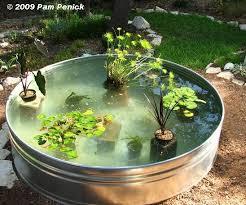 Container Water Garden Ideas Water Garden Picmia