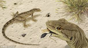 Seeking Lizard Episode New Species Of Ancient Lizard Discovered In Montana Daily Mail