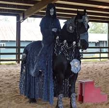 Halloween Costumes Horse 22 Horse Costumes Show Images Horse