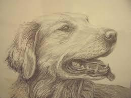 c varley signed framed black u0026 white pencil sketch of golden