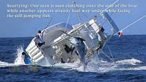 how big are sinks marlin sinks fishing boat vessel capsizes after hooking huge fish