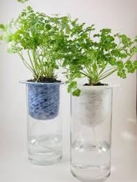 Diy Self Watering Herb Garden   self watering planters google search green stuff pinterest