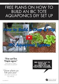 ibc tote aquaponics construction backyard aquaponics aquaponics