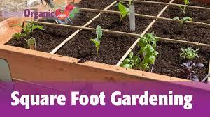 square foot gardening tips 5 best garden design ideas