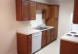 550 square feet the pool apartments in carthage texas units