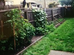 square foot farming part 1 suburban survival blog