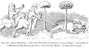 file sport with dogs how the wild boar is hunted by means of dogs
