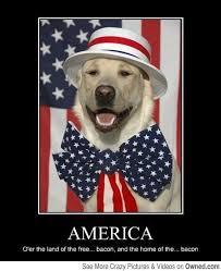 Proud Meme - 34 patriotic meme s pic s to make you proud gallery ebaum s