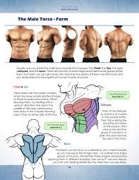 Human Anatomy Pdf Books Free Download Draw With Jazza Easy Anatomy Jazza Studios