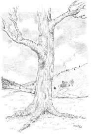 oak tree sketch grayscale coloring pinterest tree sketches